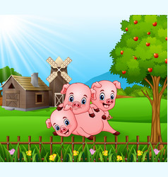 Cartoon three little pigs playing in the farm back vector
