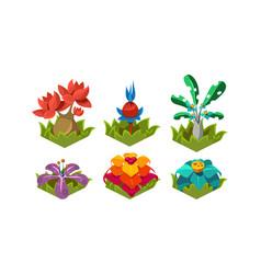 flat set fantasy plants tropical trees vector image