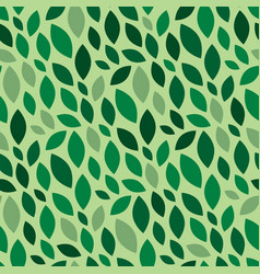 foliage pattern seamless summer or spring green vector image