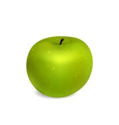 Grren Apple vector image