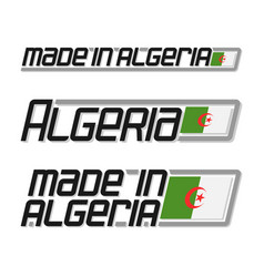 made in algeria vector image
