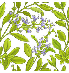 sage branch pattern vector image