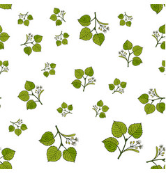 seamless pattern with linden branches vector image