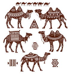 Set of stylized figures of camels vector