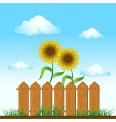 Sunflowers on blue sky vector