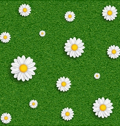Background of grass and flowers image vector