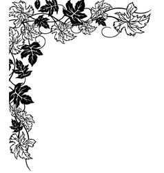 Vine with leaves vector