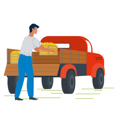 Auto with picking apples framer and fruit vector
