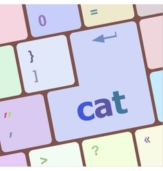 cat word on computer pc keyboard key vector image