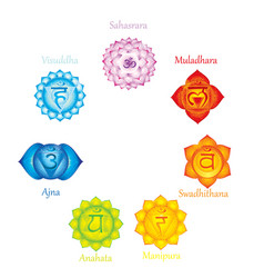 chakras icons concept of chakras used in hinduis vector image