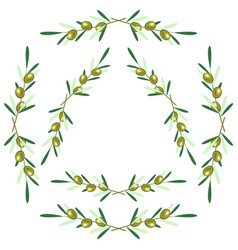 set of round frames - olive branches white vector image