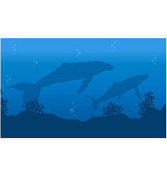 Silhouette of whale on underwater landscape vector
