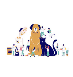 veterinarian pet checkup animal treatment vector image