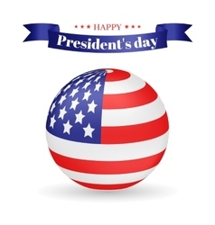 President s Day American flag vector image vector image