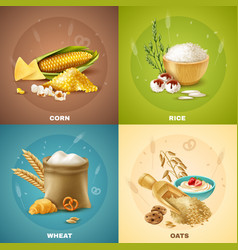 cereals design concept vector image