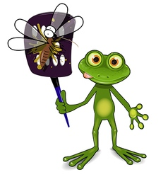 Frog and mosquito vector image