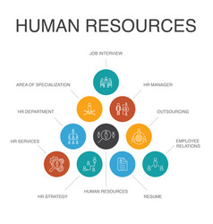 Human resources infographic 10 steps concept job vector