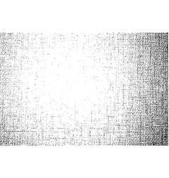 monochrome with fabric texture vector image