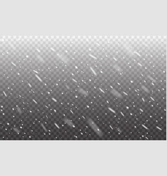 snow background snowfall realistic on transparent vector image