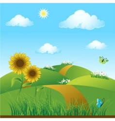 Sunflowers on green field vector