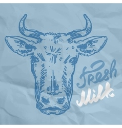head of the cow sketch vector image vector image