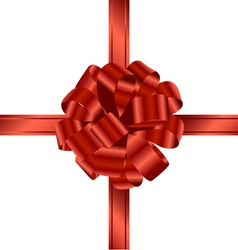 ribbon and bow vector image vector image