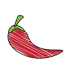 Color crayon stripe chili pepper mexican vegetable vector