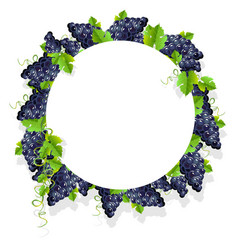 Frame with black grapes vector