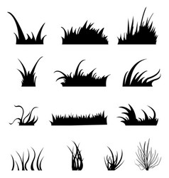 set grass silhouettes vector image