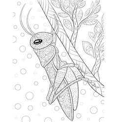 Adult coloring bookpage a cute cricket on a vector