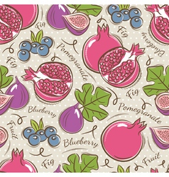 Background with pomegranate fig and blueberry vector