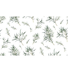 Eucalyptus seamless pattern different willow vector