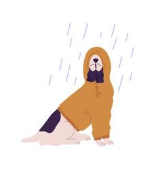 Funny dog wearing hoodie under rain flat vector