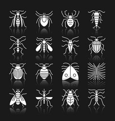 Insect white silhouette with reflection icon set vector
