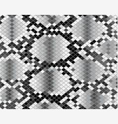 Pattern snake skin vector