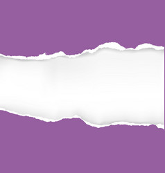 violet ripped paper background vector image