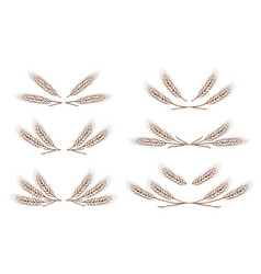 Wheat ears design elements set vector