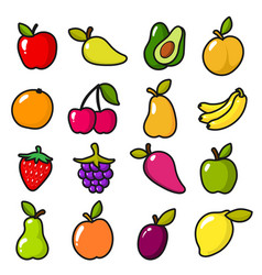 collection of fruits in cartoon style vector image