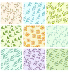floral color background vector image