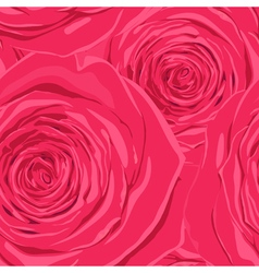 Beautiful seamless background with pink roses vector image vector image