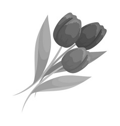 Bouquet of red tulips easter single icon in vector