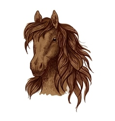 Brown running mustang portrait vector image