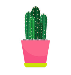 Cactus houseplant in flower pot vector