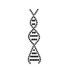 Dna spiral icon with round molecule spheres vector