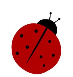 flat ladybug on white background vector image