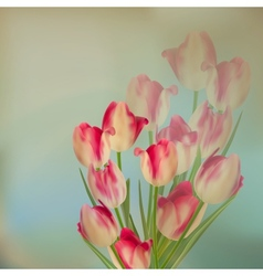 Large bouquet of tulips EPS 10 vector