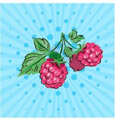 sweet berries of raspberries on a green branch on vector image