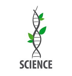Logo dna in form of plant leaves vector
