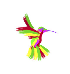abstraction masks the hummingbird vector image