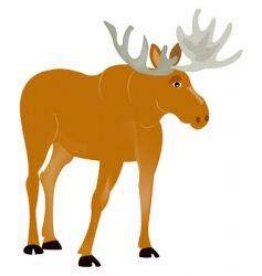Animal moose vector